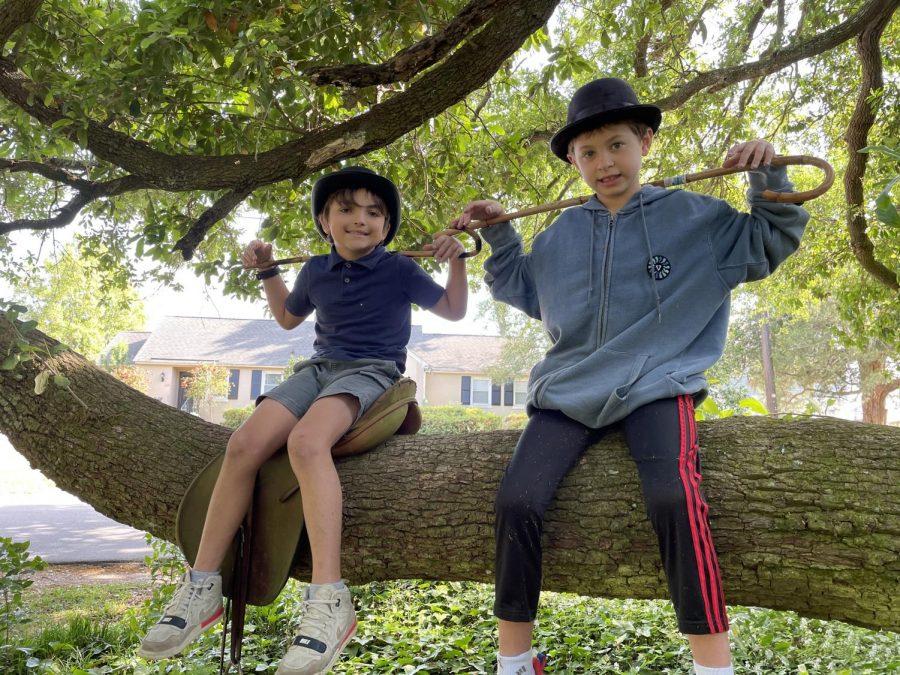 Hank and Jackson - having fun on the tree limb!